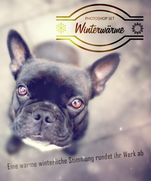 winterwaerme_shop_werbebild-1