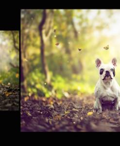 Vorschau Photoshop Set Frühling – 4 Seasons