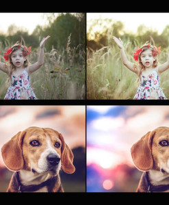 Vorschau Lightroom GRATIS DEMO PACK