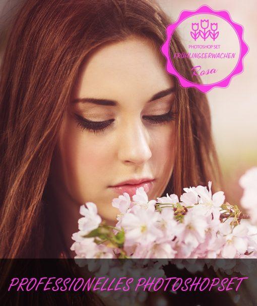 Frühlingserwachen Rosa Produktbild 2