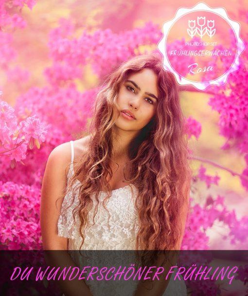 Frühlingserwachen Rosa Produktbild 3