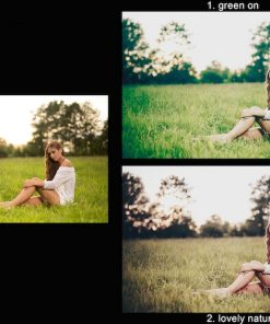 Vorschaubild Lightroom Presets Green on und Loveley Nature