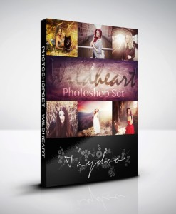 Photoshop Aktion Wildheart Produktbox