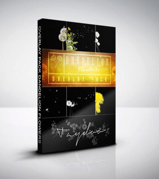 Produktbox Overlay Paket Dandelion