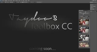 Taydoos Toolbox CC