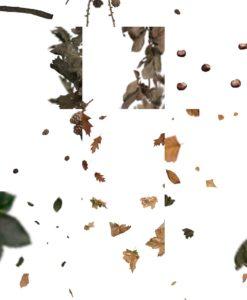 herbst-overlays-vol-1-collage-3