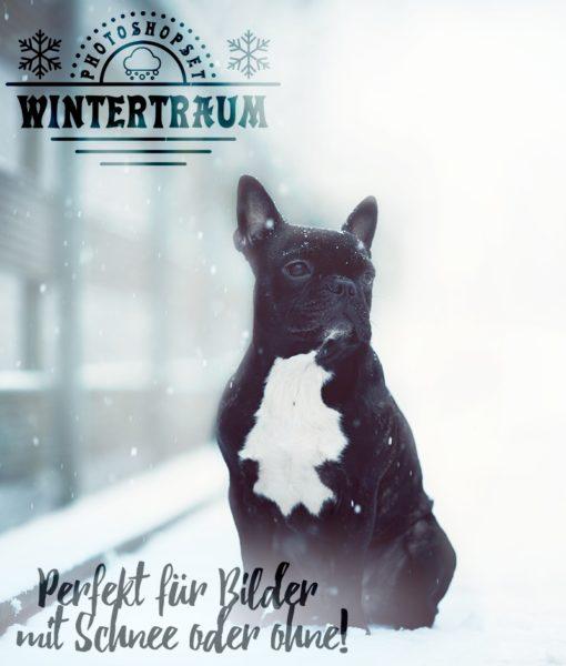 wintertraum-poduktbild-2
