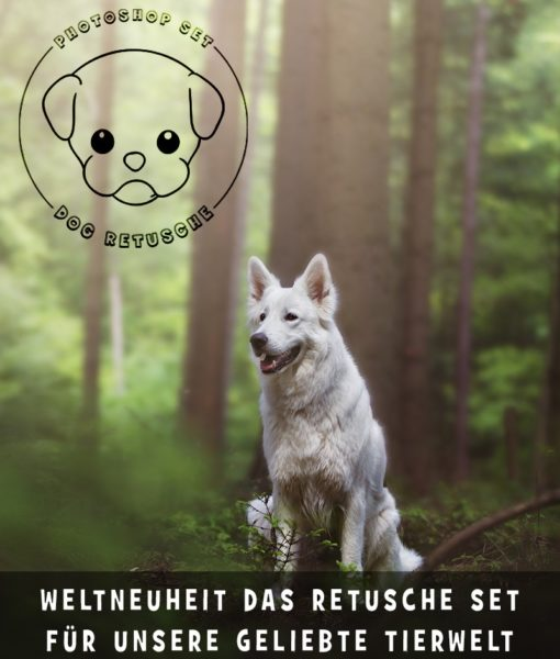 photoshop-dog-retusche-4