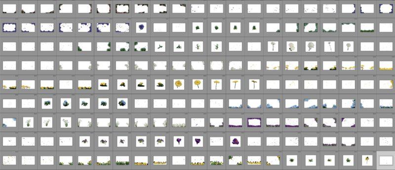 873 Blumen-Overlays für Bildbearbeitung- Taydoos Flower Power Frühling Produktbild 4