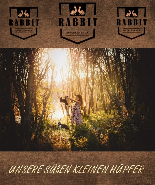 produktbild-rabbit-1