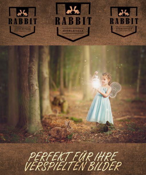 produktbild-rabbit-2