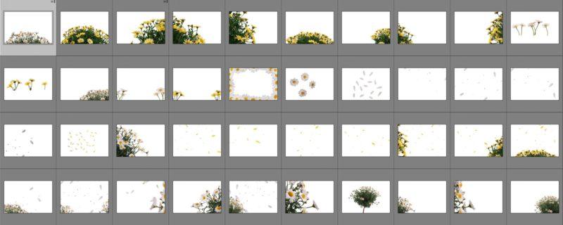 margaritten-collage