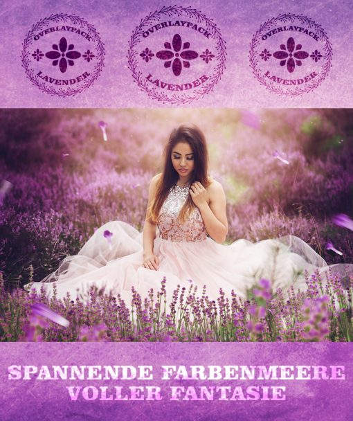 produktbild-lavender-1