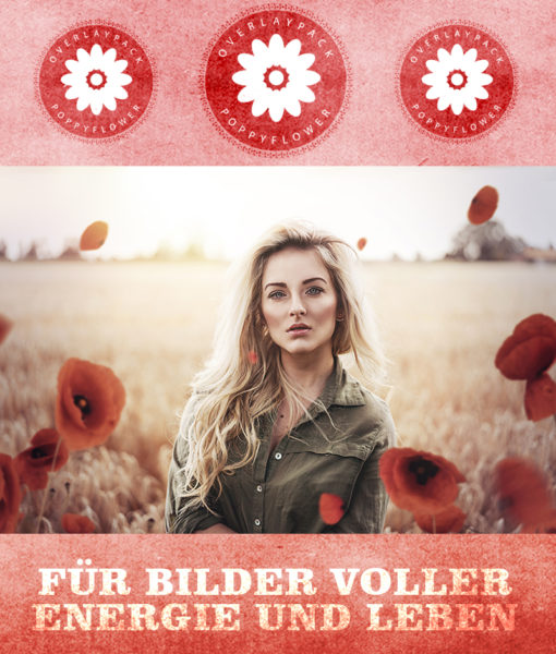 produktbild-poppyflower-1