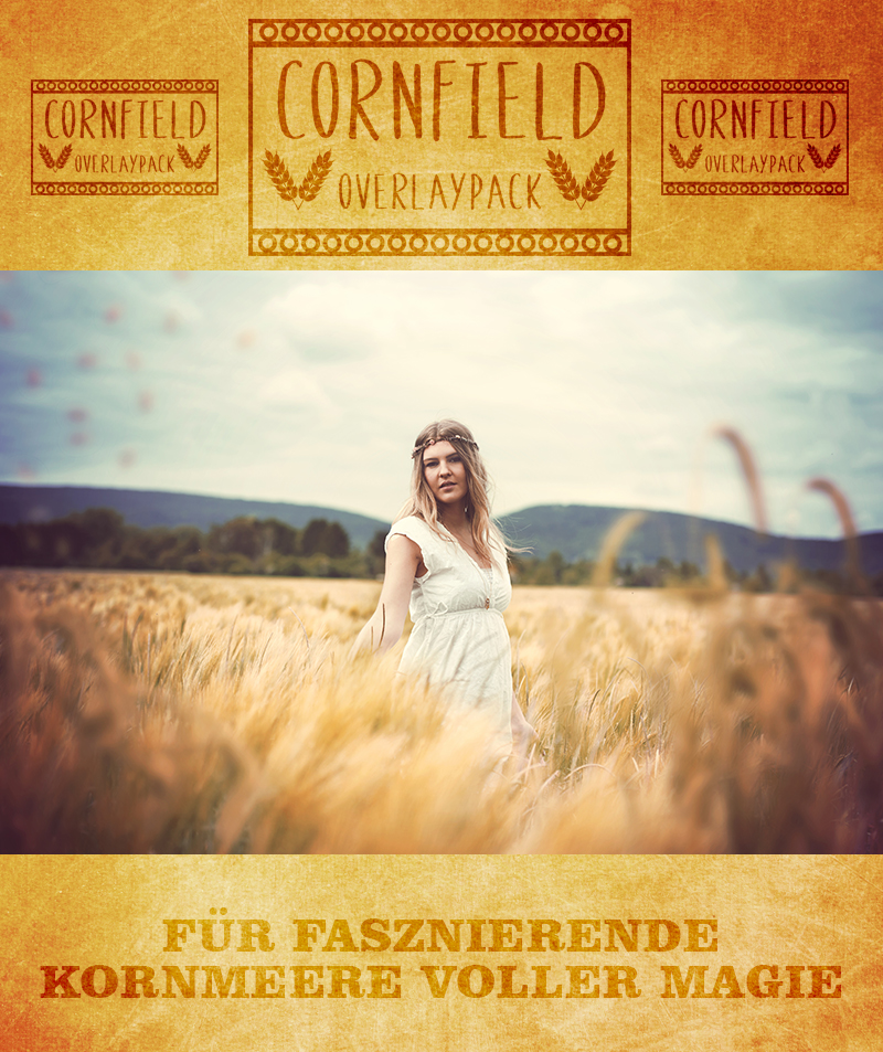 produktbild-cornfield-2