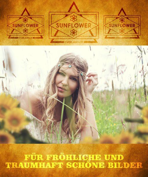 produktbild-sunflower-1