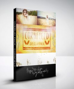 produktbox-cornfield