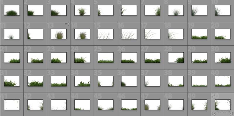 Collage Gräser Overlays