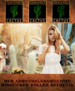 OP Hochkant Cactus 1