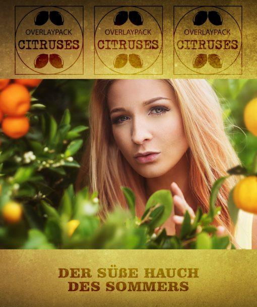 Hochkant Citrus 1
