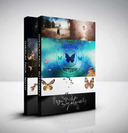 produktbild-bundle insetcs-moth and butterfly
