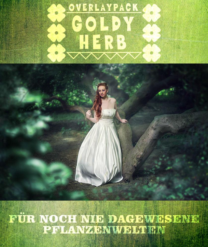 produktbild-goldy-herb-1