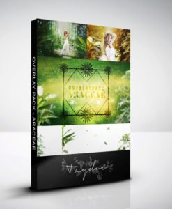 produktbox-araceae