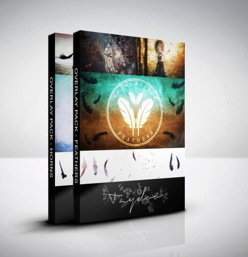 produktbox-objektbundle-horns and feathers