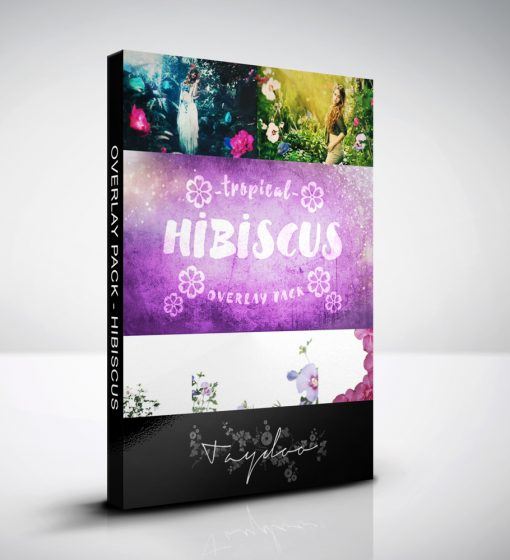 produktbox-hibiskus