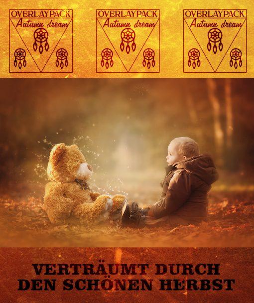 dreamcatcher-autumn-2