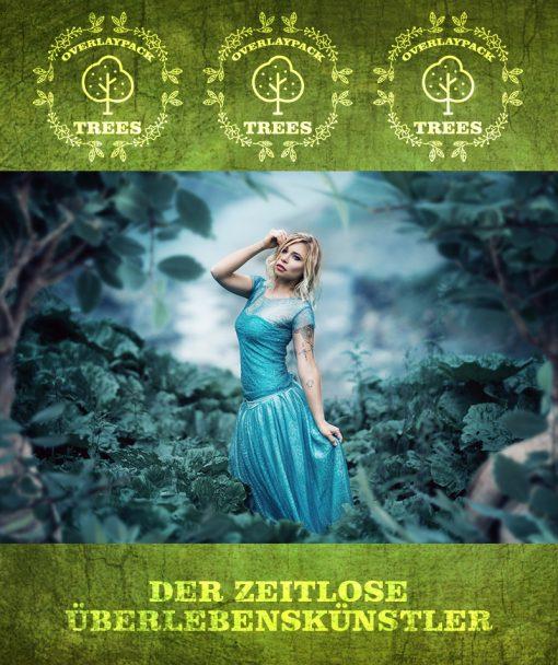 produktfoto-trees-2