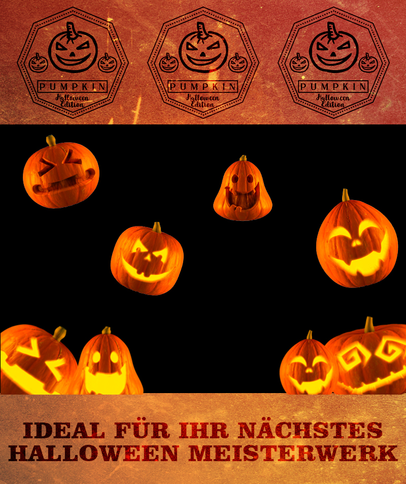 pumpkin-hochkant-1