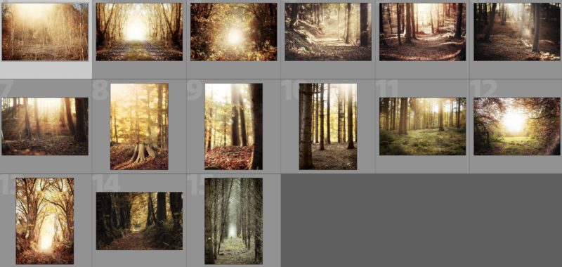 collade-herbst-backdrops-2