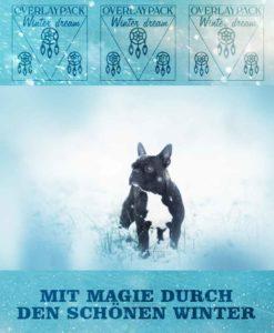 winter-dream-produktbild-2