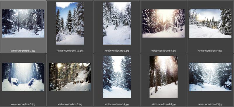 collage-winterwonderland