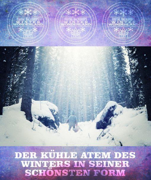 produktbild-winterwonderland-2