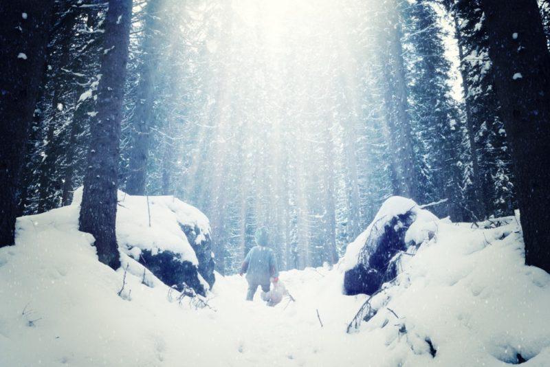 winter-wonderland-nachher1