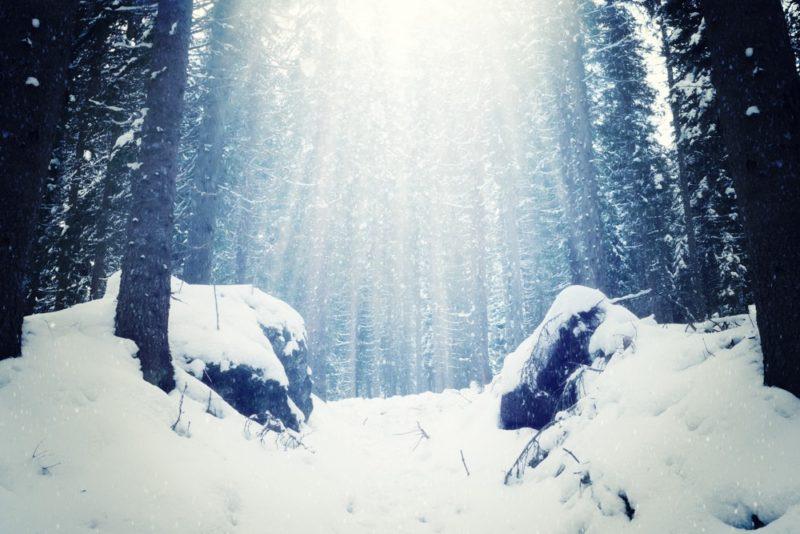 winter-wonderland-vorher1