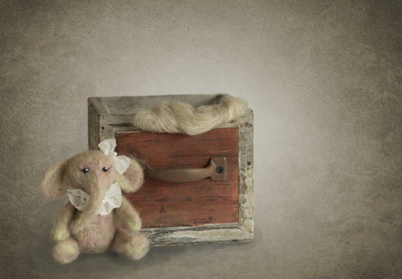 newborn-animals-vorher5