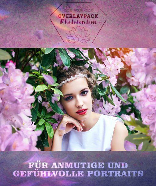rhododendron-produktbild-1