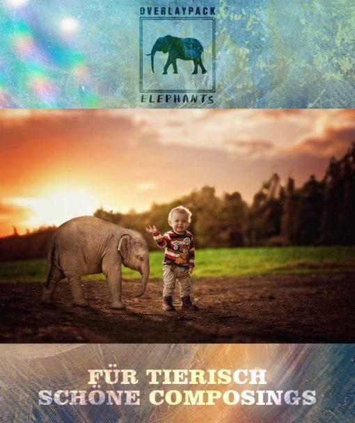 produktbild-elephants-2