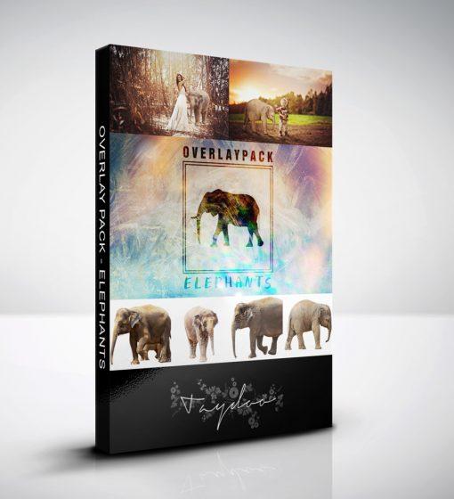 produktbox-elephants