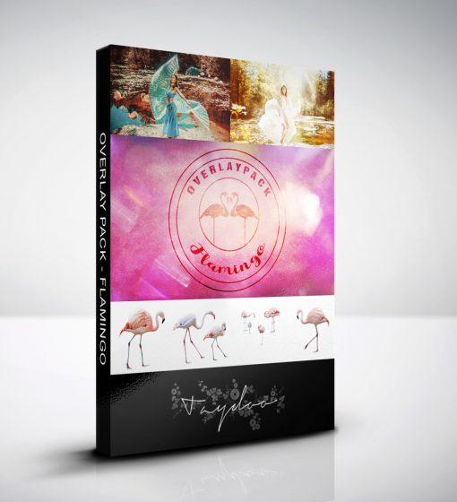 produktbox-flamingo