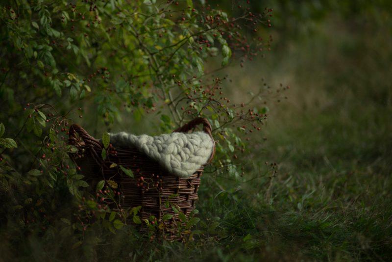 autumn-baby-vorher-4
