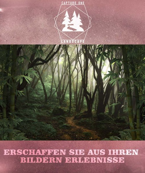 c1-landscape-hochkant-2