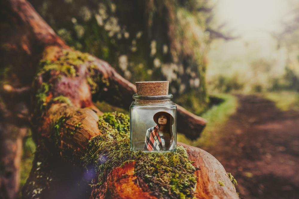madeira-bottle-jungle-nachher1