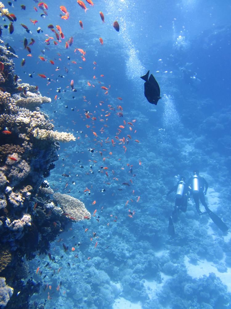 vorher-underwater-film-3